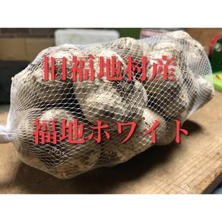 福地ホワイト発祥の地 福地産 福地ホワイト M~L 3kg 生にんにく 青森県産(野菜)