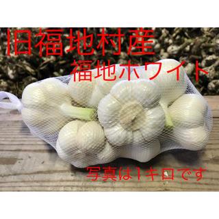 福地ホワイト発祥の地 福地村産 福地ホワイト L 10kg 生にんにく 青森県産(野菜)