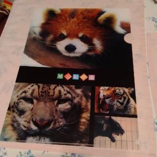 ★旭山動物園クリアファイル(クリアファイル)