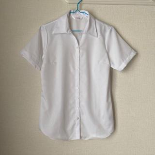 アオヤマ(青山)の洋服の青山 レディース半袖シャツ(シャツ/ブラウス(半袖/袖なし))