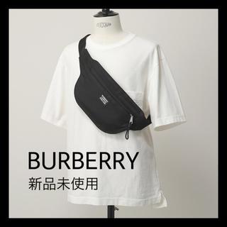 BURBERRY - BURBERRY バムバッグ ✩専用袋付き✩