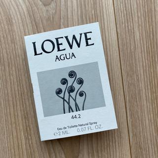 ロエベ(LOEWE)のAGUA (ユニセックス)