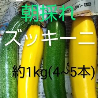 ズッキーニ(約1kg  4~5本)(野菜)