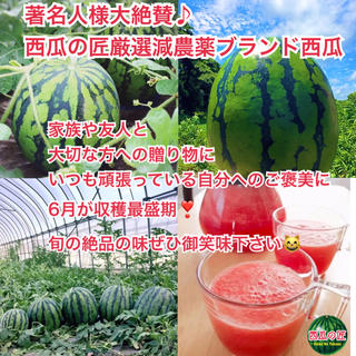 著名人様大絶賛✧リピーター続出!西瓜の匠厳選減農薬ブランド西瓜3L(フルーツ)