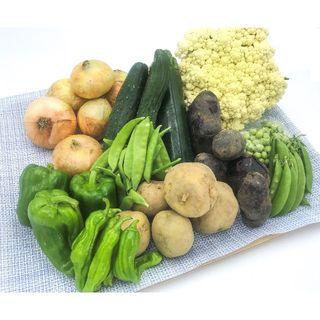 [無農薬で栽培した野菜]新潟 産直 野菜 詰合せ(10種類)[4kg未満](野菜)