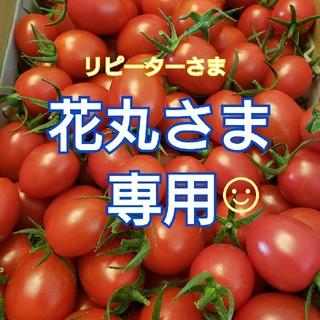 3㎏ 花丸さま専用です☺️ ミニトマト(野菜)