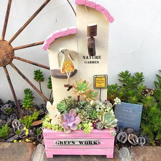 ★多肉植物 寄せ植え〜ピンクのお屋根の木製HOUSE〜★(その他)