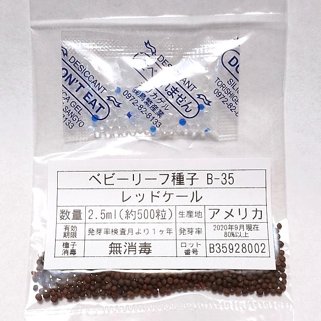 ベビーリーフ種子 B-35 レッドケール 2.5ml 約500粒 x 2袋 食品/飲料/酒の食品(野菜)の商品写真