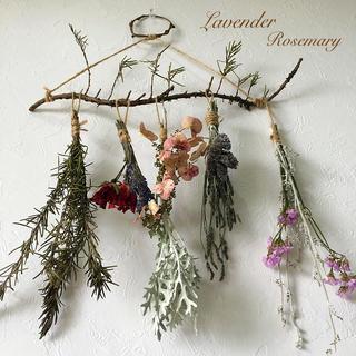 香り立つ無農薬ローズマリーの木ドライフラワー スワッグガーランド ラベンダー (ドライフラワー)