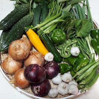 お任せ野菜詰め合わせ80サイズ(野菜)