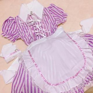 パープル ストライプ メイド服(衣装一式)
