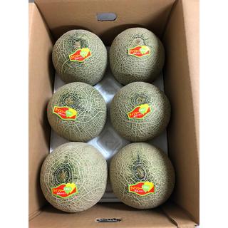 熊本県クインシーメロン6玉 箱込み6.5kg(フルーツ)