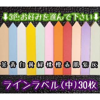 ◎ 30枚 ◎( 中 )選べるカラー ラインラベル 園芸ラベル カラーラベル(その他)