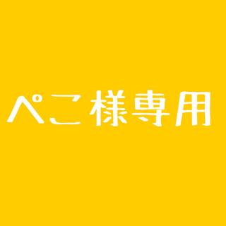 ぺこ様専用カラーオーダーG3(エフェクター)