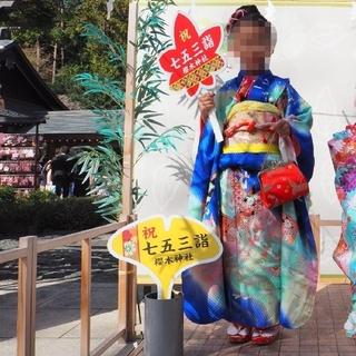 七五三着物セット 7歳 七歳 女の子(和服/着物)