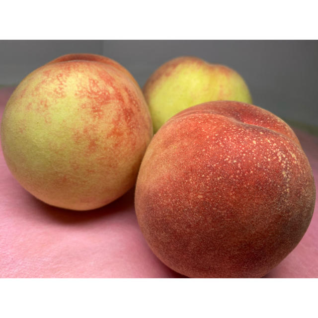 和歌山県産 あら川の桃 🍑1箱15玉入り 食品/飲料/酒の食品(フルーツ)の商品写真