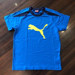 プーマ(PUMA)の美品 プーマ Tシャツ 140cm 青 ブルー(Tシャツ/カットソー)