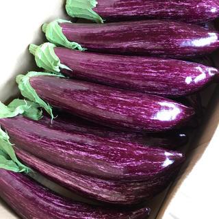 特選 無農薬ゼブラ茄子(野菜)