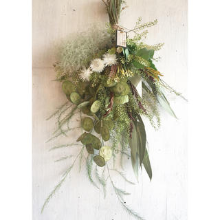 Miss green dried flowerミスグリーンドライフラワースワッグ(ドライフラワー)