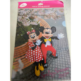 Disney - ディズニー クリアファイル 実写ミキミニ