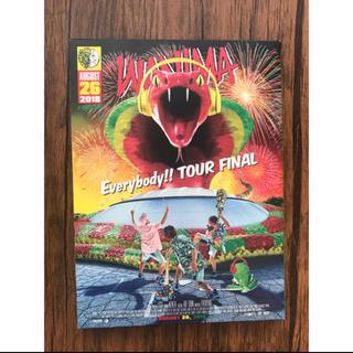 ワニマ(WANIMA)のWANIMA Everybody!!TOUR FINAL  DVD(ミュージック)