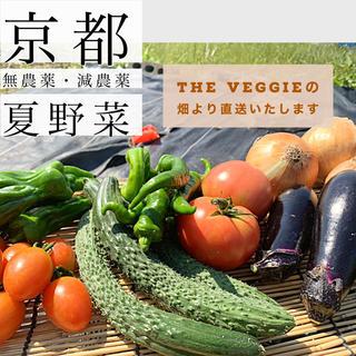 野菜詰めあわせ!!夏の旬京野菜をお届け!(野菜)