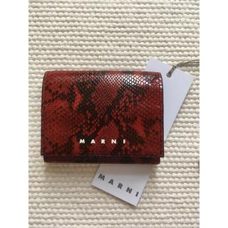 マルニ(Marni)のレア!! 新品 MARNI マルニ 20SS 赤 パイソン ウォレット ミニ財布(折り財布)