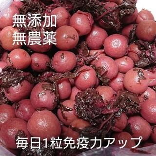 梅干し  小梅漬け(カリっと食感) 500g(漬物)