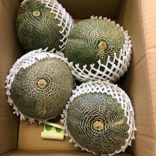 茨城県タカミメロン1箱4個入り3L③(フルーツ)
