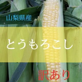 🌽訳あり山梨県産とうもろこし🌽(野菜)