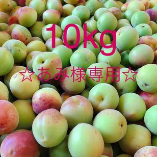 ☆あみ様専用☆ 10kg 南高梅 農家自家栽培 無農薬(フルーツ)
