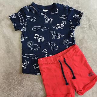 エイチアンドエム(H&M)の完売品 レア ❤️ H&M Tシャツ & パンツセット 80サイズ(Tシャツ)