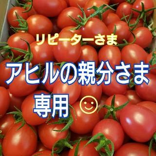 3㎏ アヒルの親分さま専用です☺️ ミニトマト(野菜)