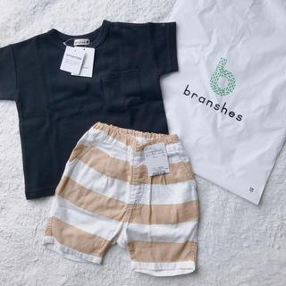 Branshes - Tシャツパンツセット