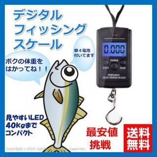 フィッシング デジタル スケール LED 釣りコンパクト ポータブル 最安値(その他)