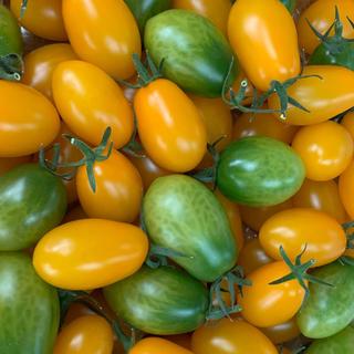 トーマスゆう様専用 7月3日発送分 プレミアムカクテルトマト1.8キロ(野菜)