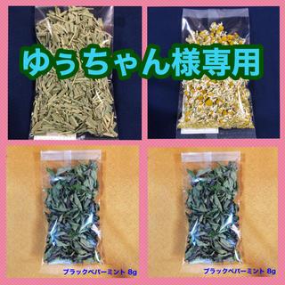 【ゆぅちゃん様専用】レモングラス・カモミール・Bペパーミント・レモンバーベナ(茶)
