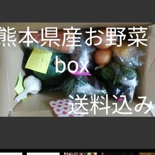 ❤熊本県産 大人気おじいちゃんのお野菜boxセット❤80サイズ箱5k 2600(野菜)