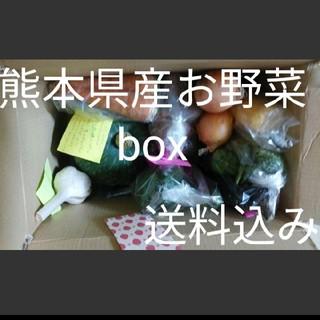 ❤熊本県産 大人気おじいちゃんのお野菜box❤100サイズ箱10k 3200(野菜)