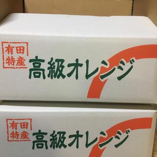 2箱セット 国産バレンシアオレンジ  L 5kg 送料無料 和歌山県産有田みかん(フルーツ)