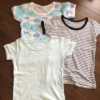 しまむら - Tシャツ 肌着 3枚セット 95