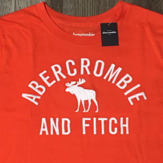 abercrombiekidsアバクロンビーロゴ刺繍TシャツUS13/14新品