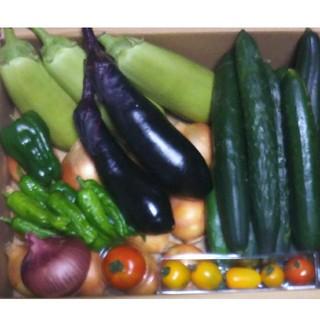 野菜  詰め合わせ(野菜)