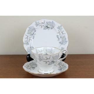 ロイヤルアルバート(ROYAL ALBERT)のロイヤルアルバート シルバーメイプル トリオ ティーカップ ケーキ皿 プレート(食器)