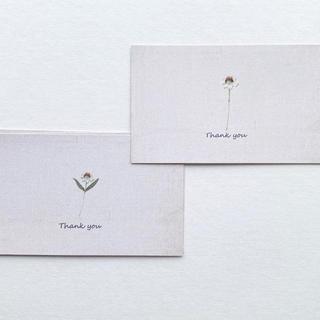 サンキューカード (カード/レター/ラッピング)