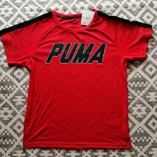 PUMA - PUMA 速乾Tシャツ 160センチ