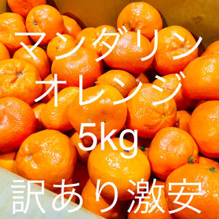 マーコットマンダリンオレンジ5kg 訳あり激安 全国送料込み(フルーツ)