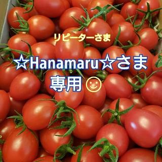4kg ~☆Hanamaru☆~さま専用です☺️ ミニトマト(野菜)