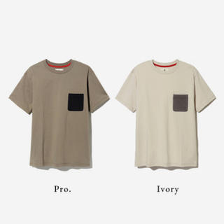 スノーピーク(Snow Peak)のスノーピーク Tシャツ Pro.(Tシャツ/カットソー(半袖/袖なし))