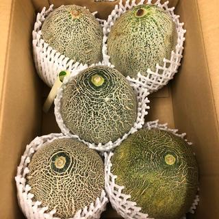 茨城県産タカミメロン1箱5個入り2L①(フルーツ)
